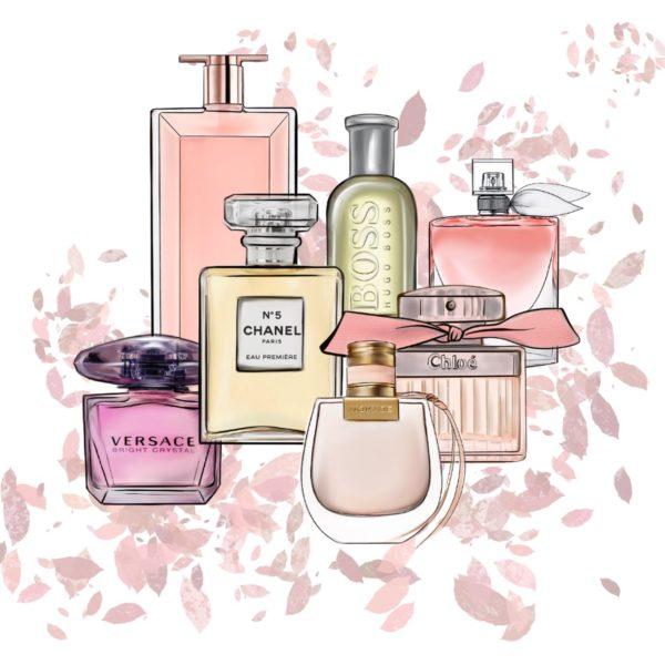 Parfums - Marisha studio ilustracija