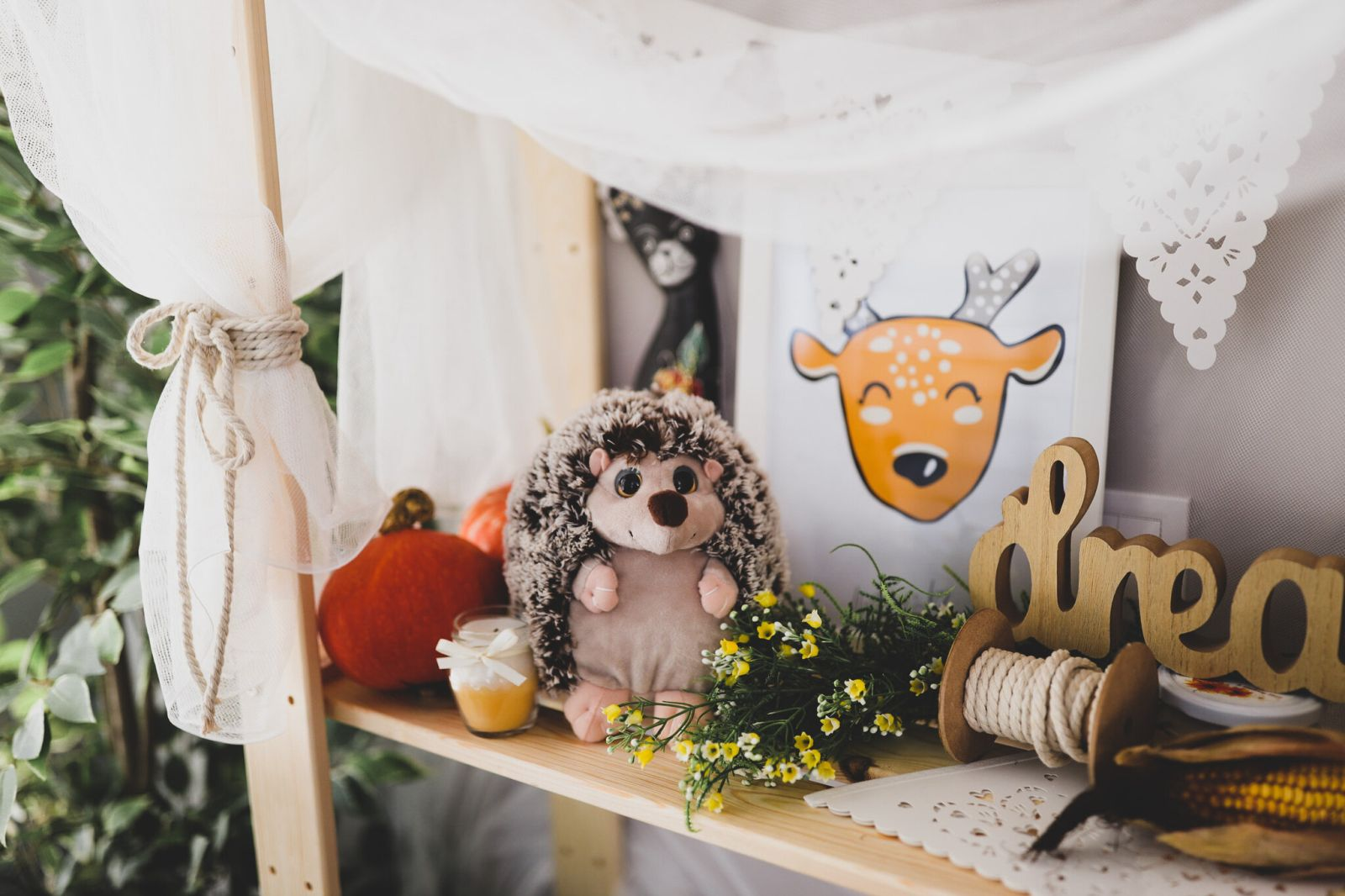 Jesensko fotkanje Marisha studio